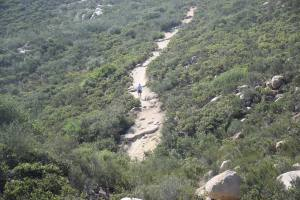 A view of trail from Iron Mountain peak (elevation: 2,696')